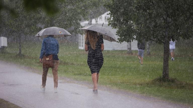 Två personer med paraplyer i regn.