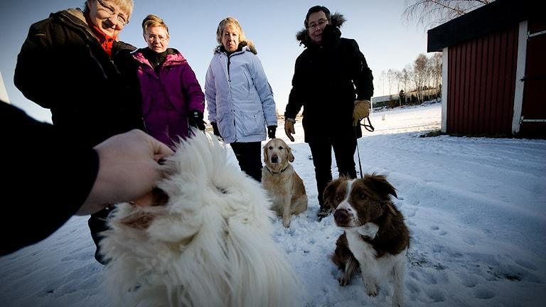 Elton, Betzy och Alfons längst fram. Mattarna heter Stina Nilsson, Isa Molin, Catarina Eweson och Anne Andersson. Foto: Johan Pettersson/Sveriges Radio
