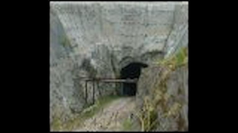 Statliga Hallandsåskommittén varnar för bestående förseningar av tunnelbygget genom åsen.