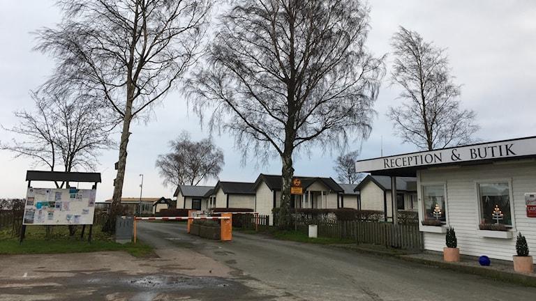 Tobisviks camping.
