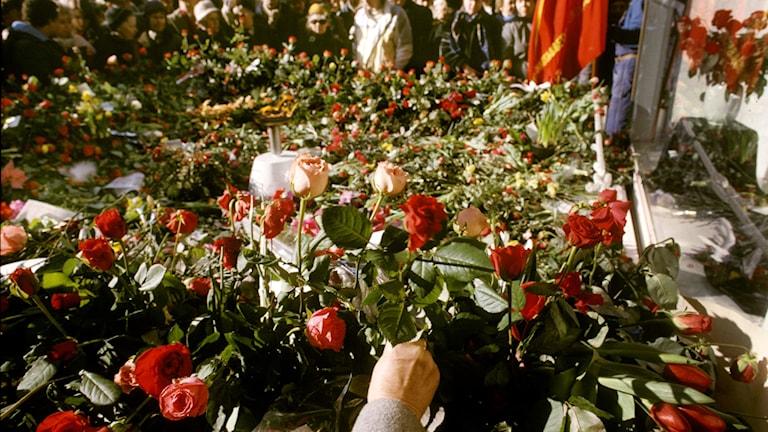 Platsen där Olof Palme mördades.