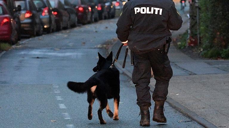 En man i dansk polisuniform går med en hund