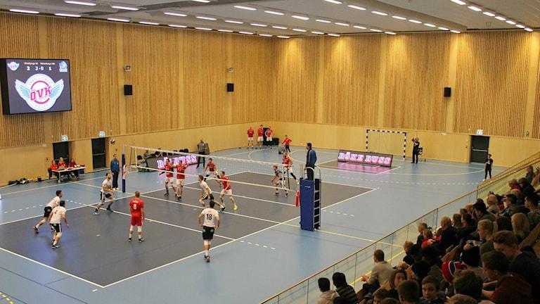 Örkelljunga volleybollklubb mot Falkenberg.