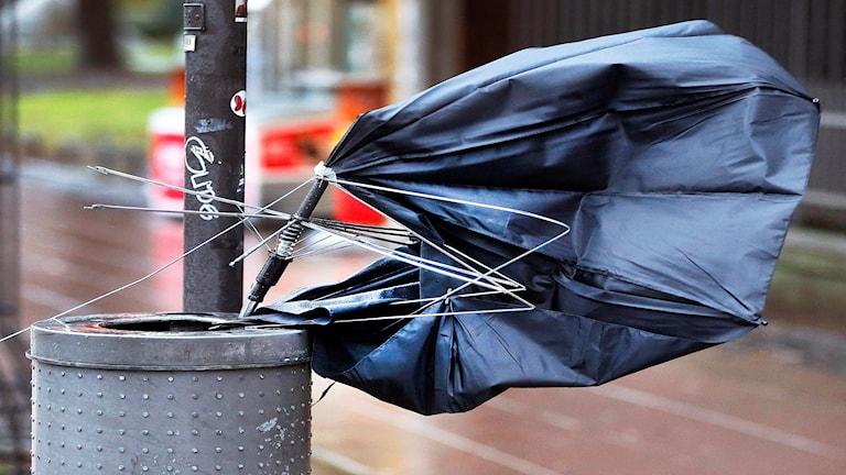 Sönderblåst paraply.