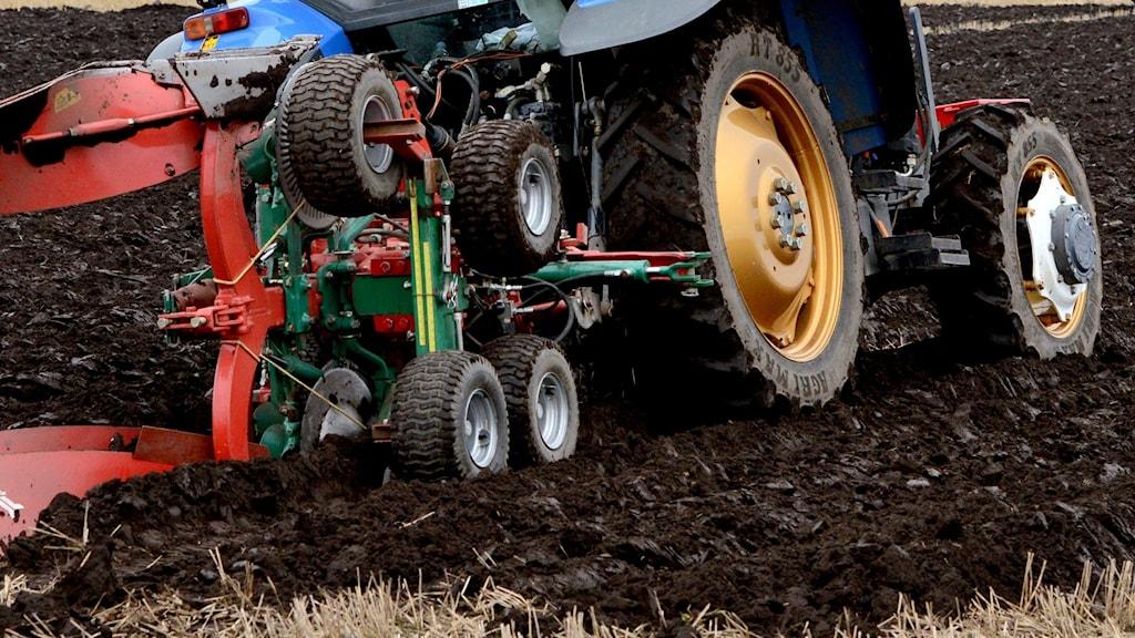 Traktor som plöjer