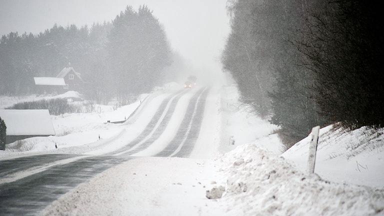 Många skånska vägar drabbades av snörök och snöfall under förmiddagen. Foto: Björn Holgersson/Sveriges Radio