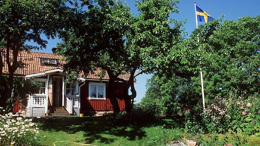 Sommarstuga, röd med vita knutar och flaggstång. Foto: Scanpix.
