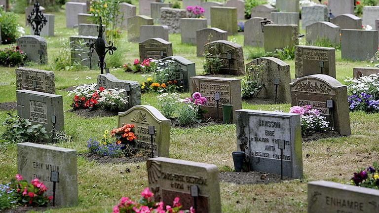 Gravar på en kyrkogård. Foto: Claudio Bresciani/TT