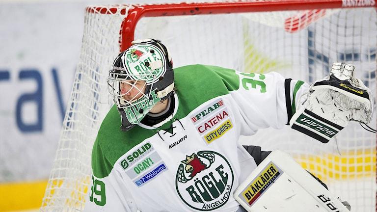 Stefan Ridderwall, Rögle. Foto: Andreas Hillergren