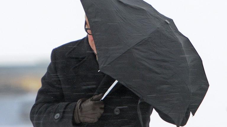 Man med paraply. Foto: Johan Nilsson/TT