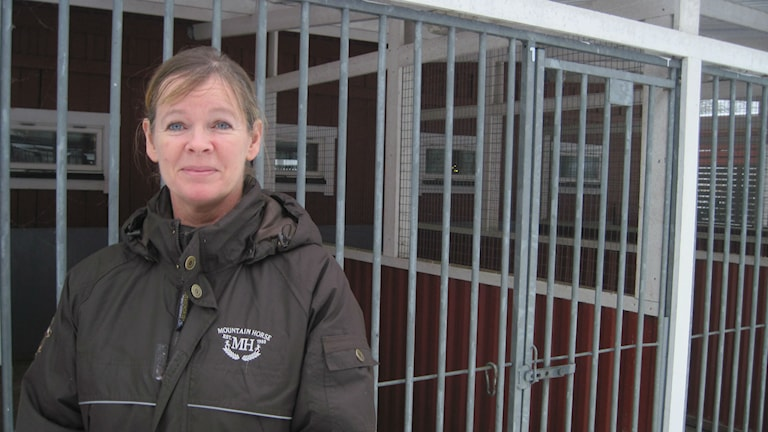Till Birgitta Frids hundpensionat kommer skotträdda hundar för att fira nyår i lugn och ro. Foto: Gunilla Nordström/Sveriges Radio