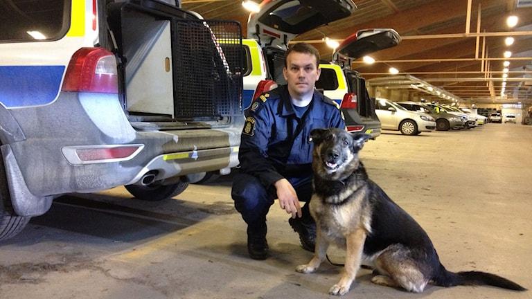 Polishunden Aldis med hundförare Rickard Karlsson