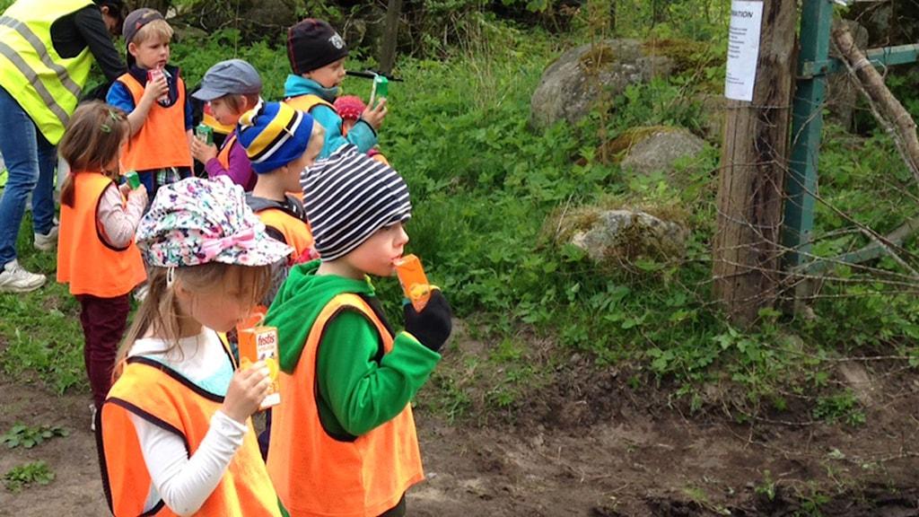 Förskolebarn återinviger Backaleden