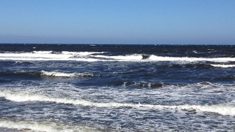 Höga vågor vid Haväng