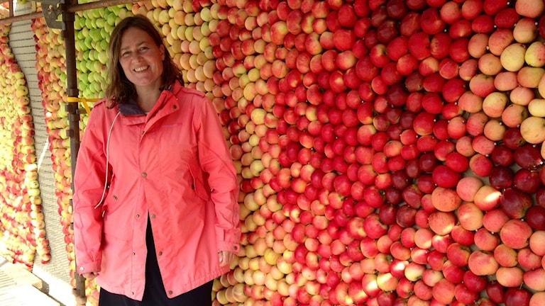 Emma Karp Lundström framför årets äppeltavla 2015