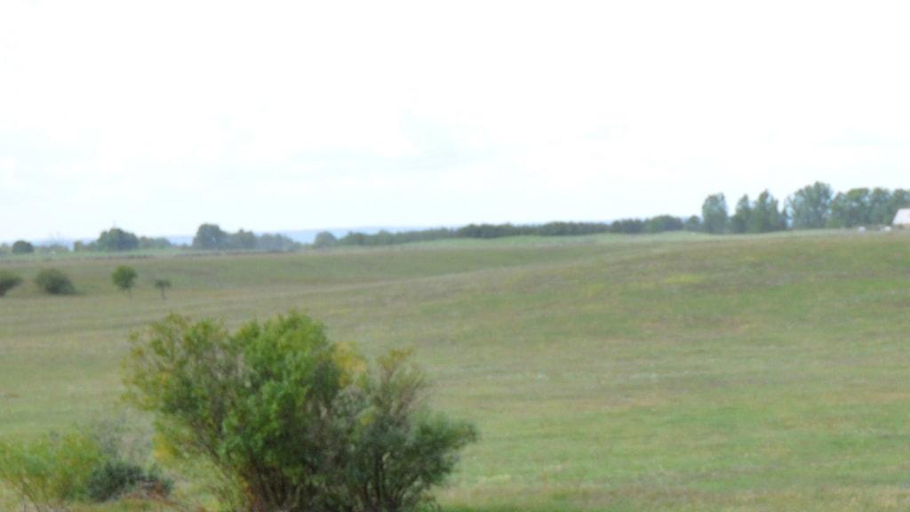 Fältet utanför Kristianstad har tidigare använts bland annat för scoutläger