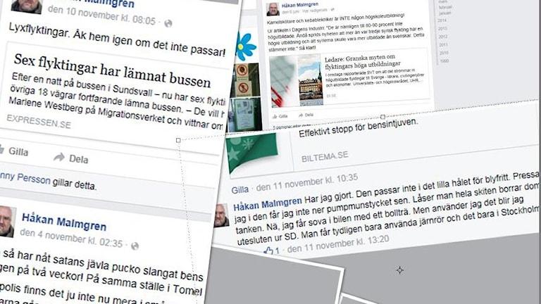 Håkan Malmgren har i en rad inlägg på sociala medier varit nedsättande. (Bilden är ett kollage.) Foto: Sveriges Radio