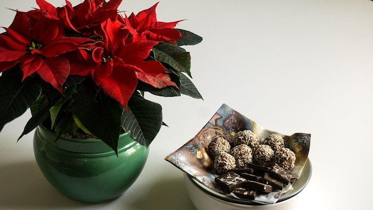 Vickies julgodis. Pepparkasbollar och rå chokladkola