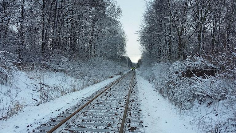 Den nedlagda järnvägen kan bli en modern testbana. Foto: Bosse Johansson/Sveriges Radio