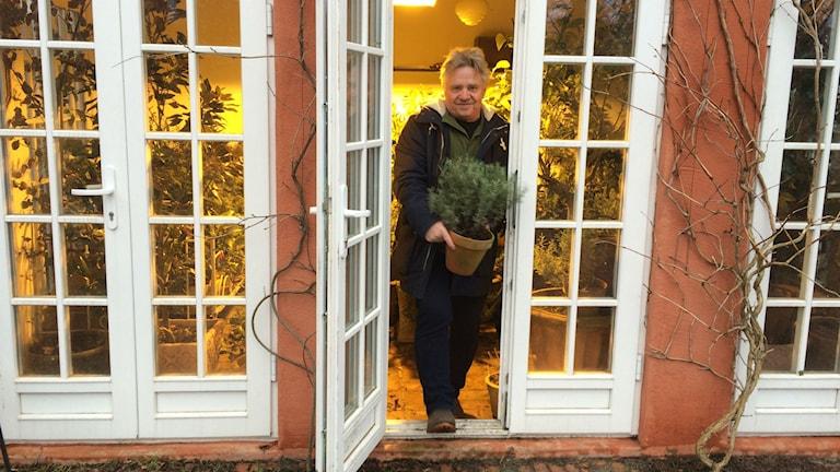 Peter Englander i sitt orangeri.
