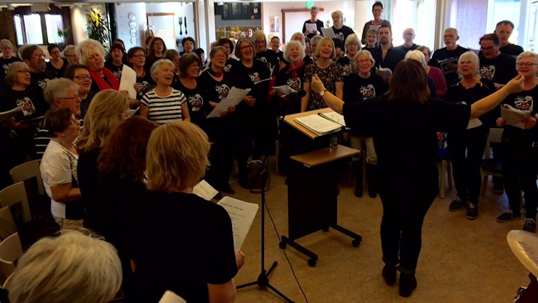 Tomelilla rockkör fyller matsalen på Österlens folkhögskola.