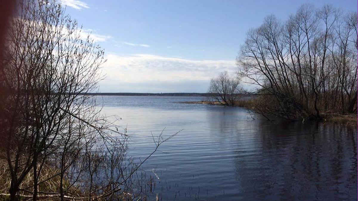 Hammarsjön vid Ekenabben