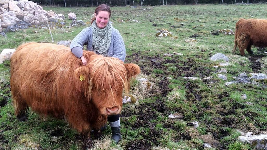 Idag bor Margit i hagen med de andra kossorna. Men hon och matte Karin Linderoth har fortfarande en speciell relation.