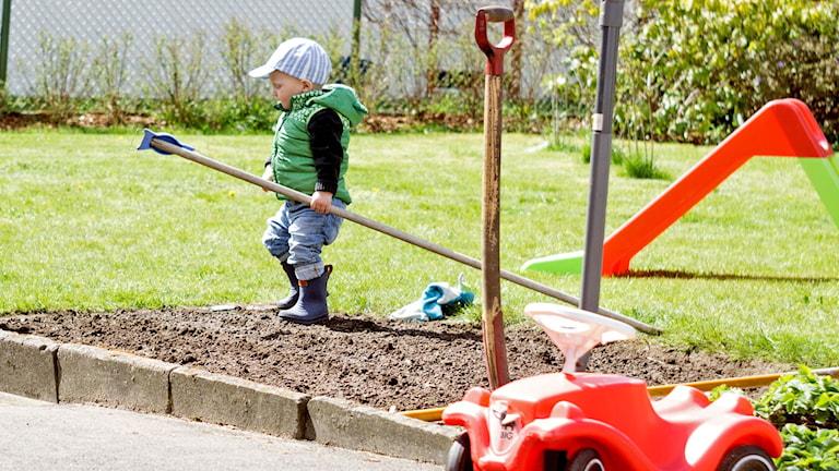 Vi har fått en ny trädgårdsexpert!