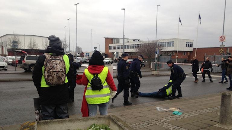 Djurrrättsaktivister bärs bort av polisen utanför ett slakteri