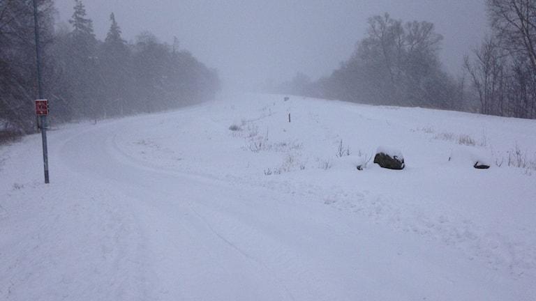 Snöbild över landskap och väg.
