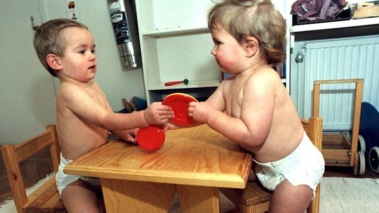 Två blöjbarn drar i samma leksak.