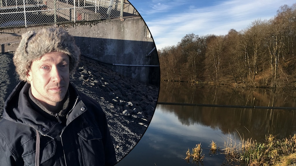 Tord Andersson, miljöstrateg i Klippan. Foto:Ossian Sandin
