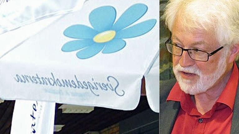 Sverigedemkratiskt parasoll och porträttbild på Anders Sannerstedt