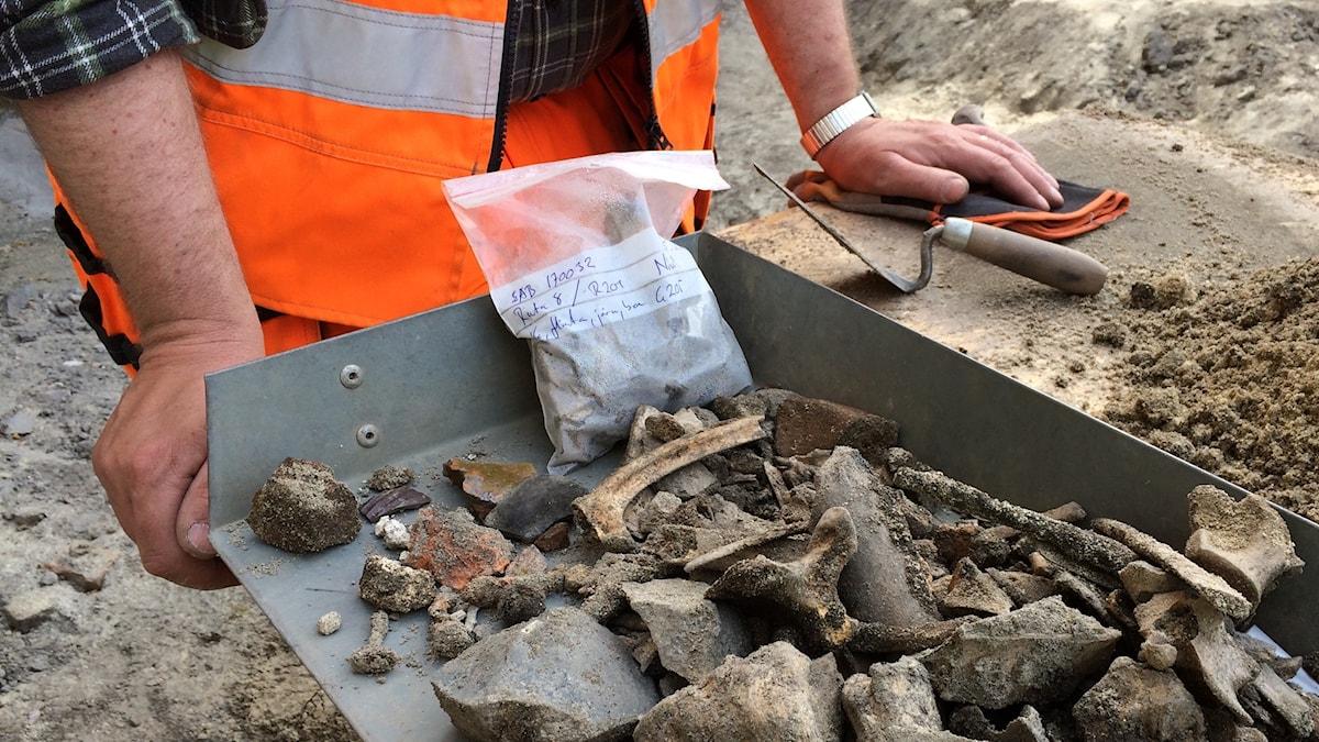 Arkeologiska fynd