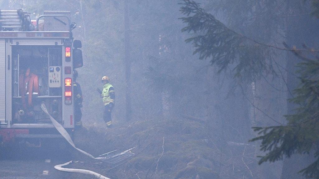 Brandrök i skog med en brandbil.