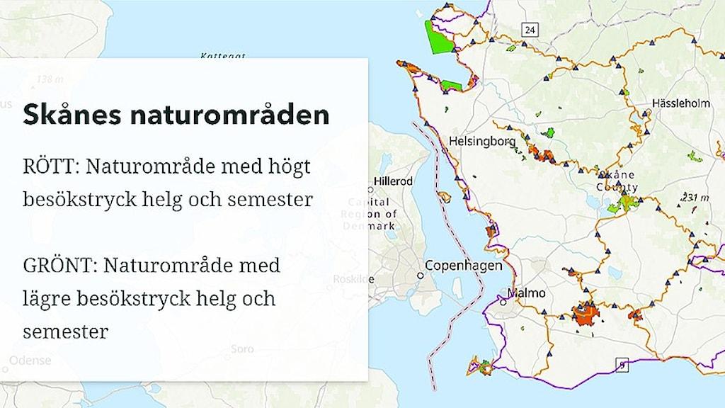 Karta över Skåne där naturområden är markerade.