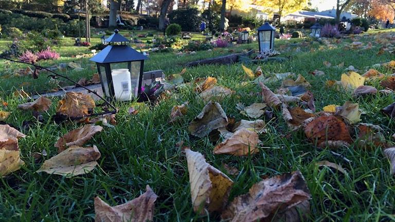 På Östra begravningsplatsen i Kristianstad har ljuslyktorna tagit plats inför Allhelgonahelgen.