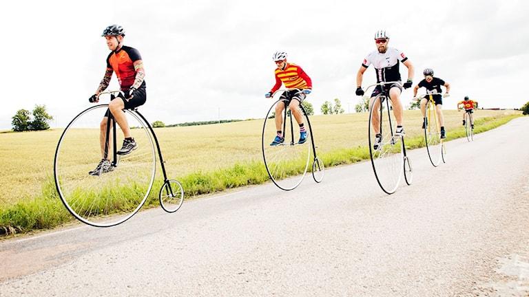 Höga cyklar, landsväg, tävling