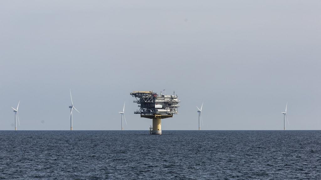 Vindkraftverk till havs.