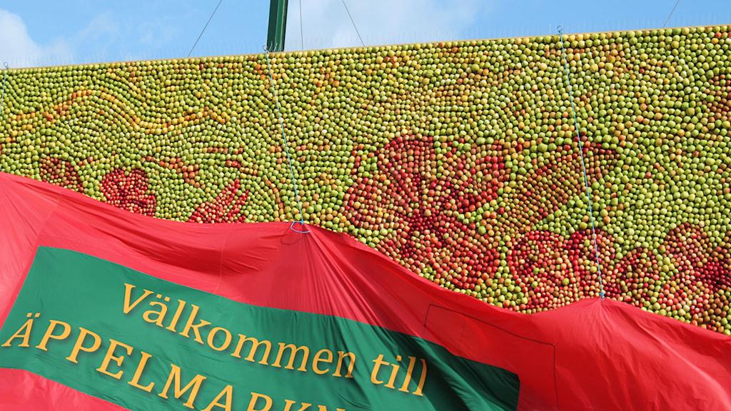 Äppeltavlan avtäcks. Foto: Malin Thelin/Sveriges Radio
