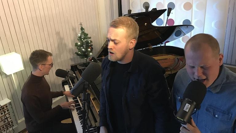 Tre män sjunger och spelar på en flygel.