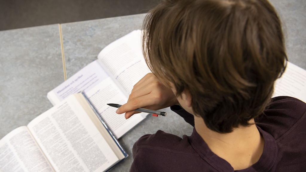 elev som studerar