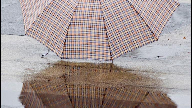 Paraply och regn på marken