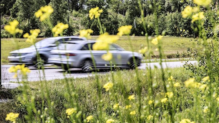 bilar susar förbi på landsväg