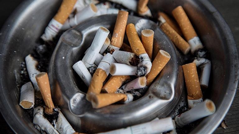 Cigarettfimpar.