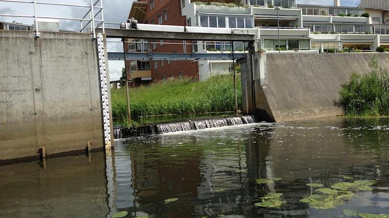 Kristianstad ligger i Vattenriket, men det är samtidigt dragkamp om vatten.