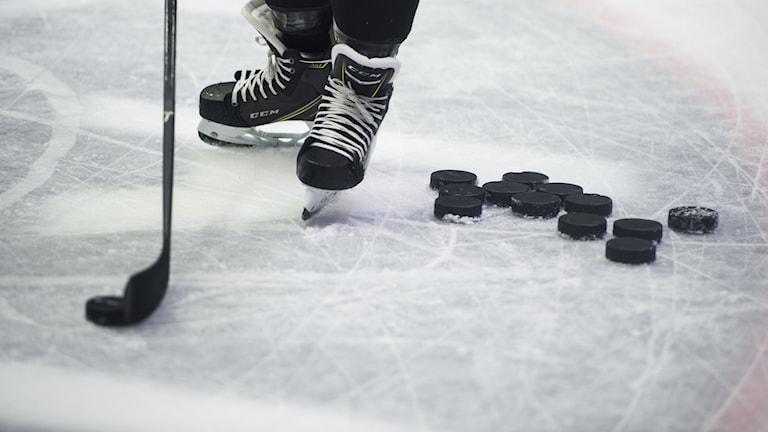 hockeypuckar