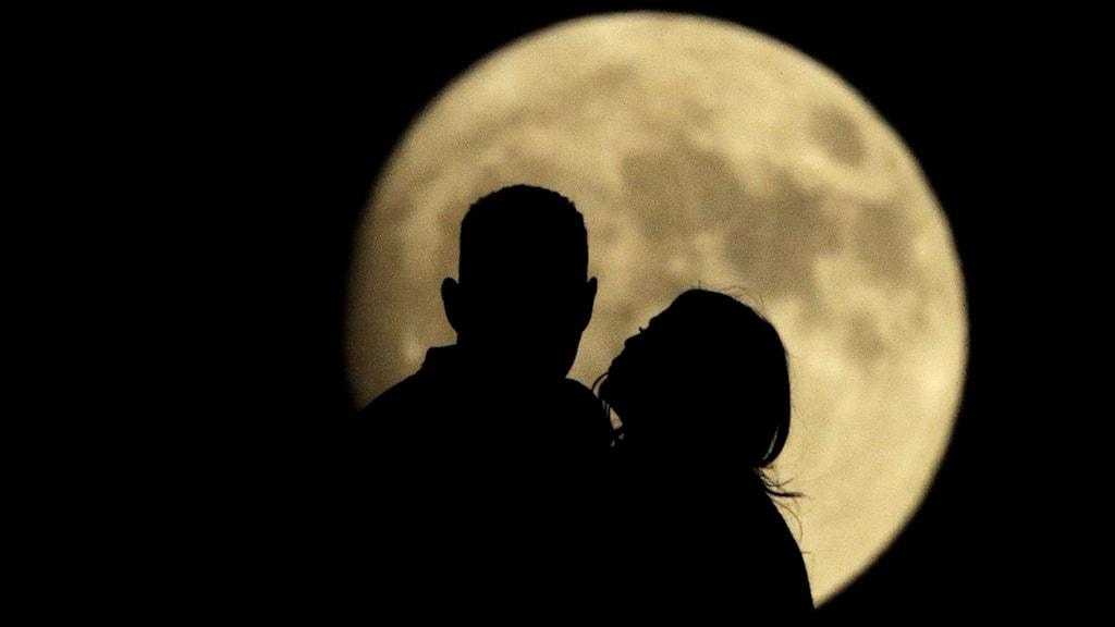 Par i månsken