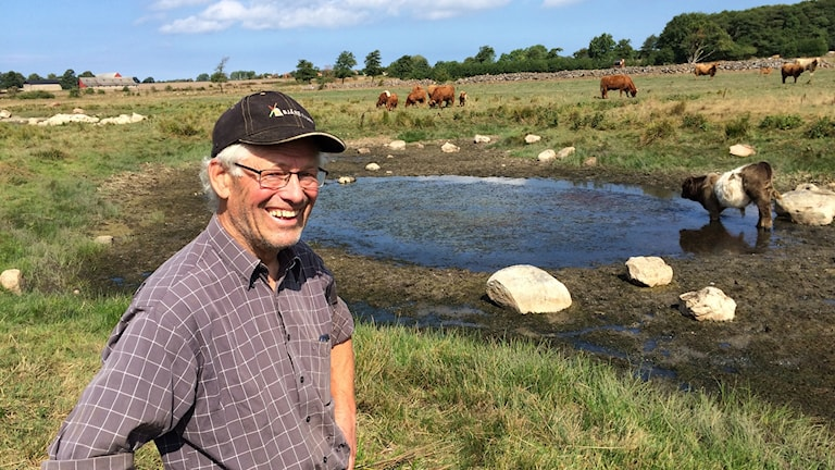 Lars Elofson på Bjärehalvön skapade en våtmark, vilket han haft nytta av under torkan.Foto: Ossian Sandin
