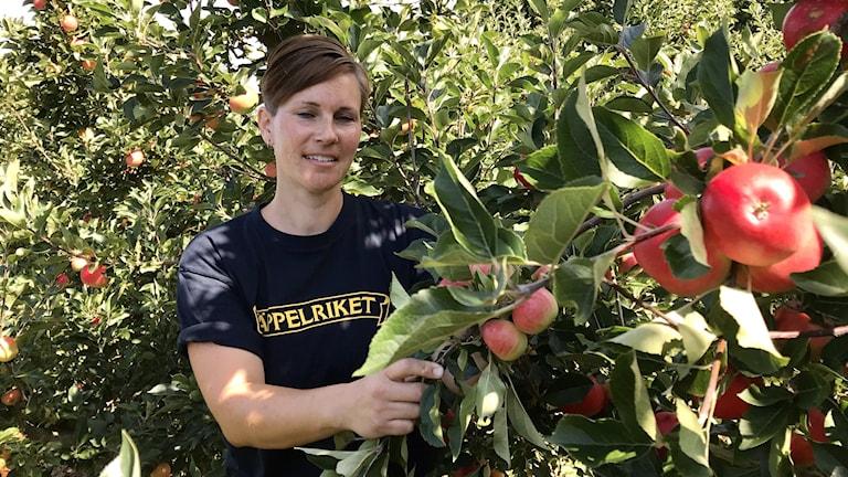 kvinna stående vid äpplen